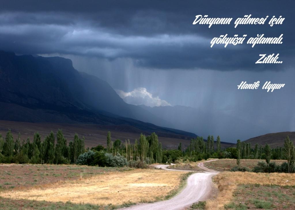 Haiga; S. Haluk Uygur